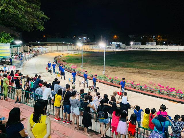 Đua chó tại Vũng Tàu - Trường đua Lam Sơn - Ảnh 1