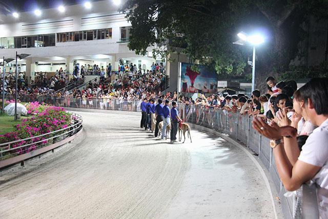 Đua chó tại Vũng Tàu - Trường đua Lam Sơn - Ảnh 4